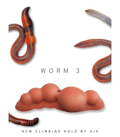 画像1: Worm 3 [Aix]
